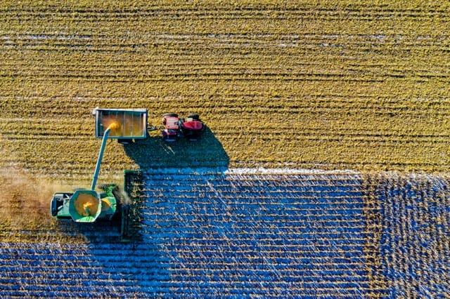 farmer English