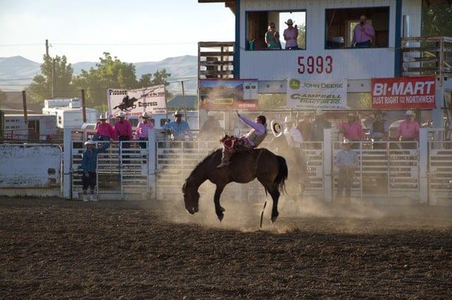 American rodeo cultural - MELHORES PODCASTS DA SEMANA #046